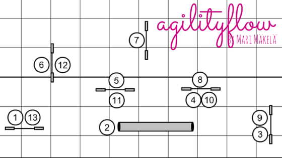 agilityflowcourses2setup2